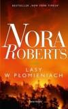 Lasy w płomieniach