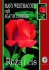 Róża i cis